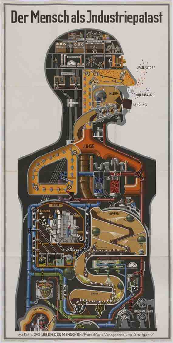 Man as Industrial Palace by Fritz Kahn