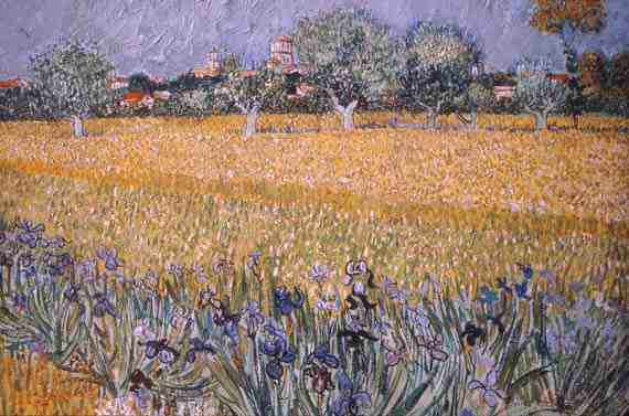 Vincent Willem van Gogh: Field with Flowers near Arles
