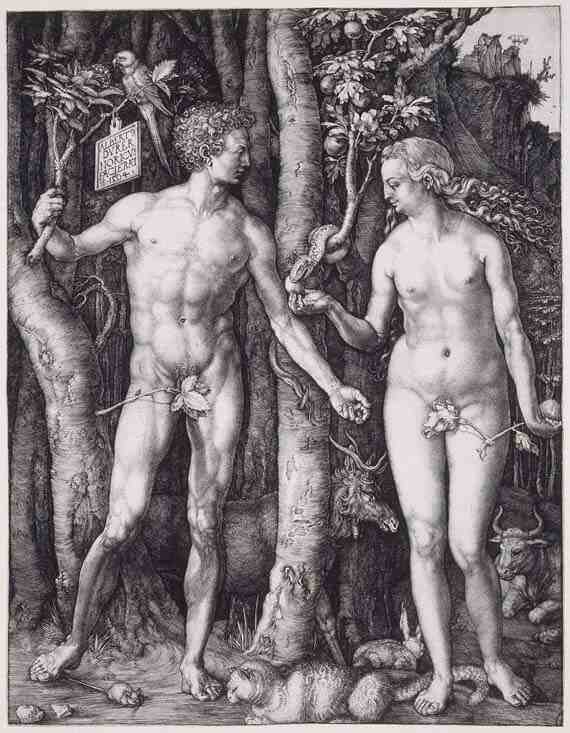 Albrecht Dürer , The Fall of Man