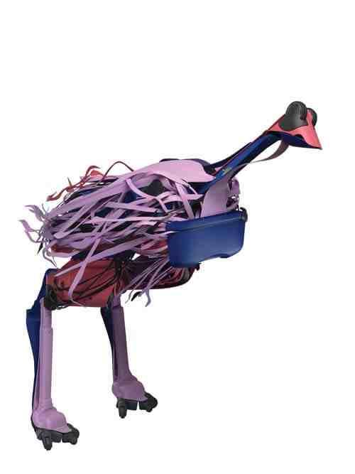 Brian Jungen: Crux Emu