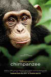 Movie Poster: Chimpanzee