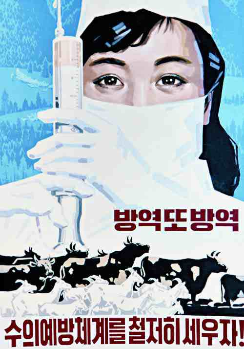 North Korean Propaganda Poster: prevent epidemics