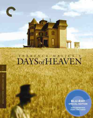 DVD Cover: Days of Heaven