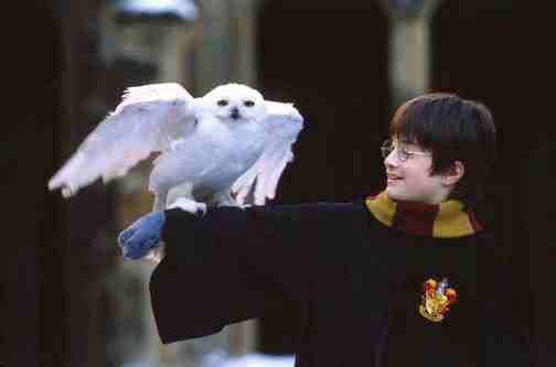 Movie Still: Harry Potter and the Sorcerer's Stone