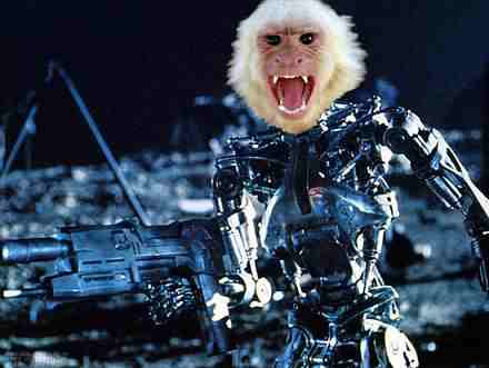 Robot Monkey Example
