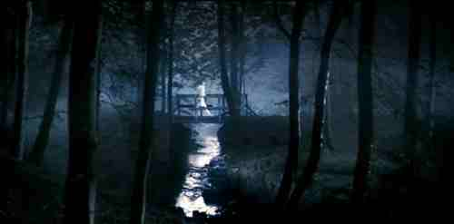 Lars von Trier's Antichrist (2009) - Bridge in the Woods