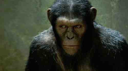 Rise Of The Planet Of The Apes (2011 ) - Andy Serkis as Caesar