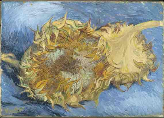 Art Review: Van Gogh Up Close, Philadelphia Museum of Art 1